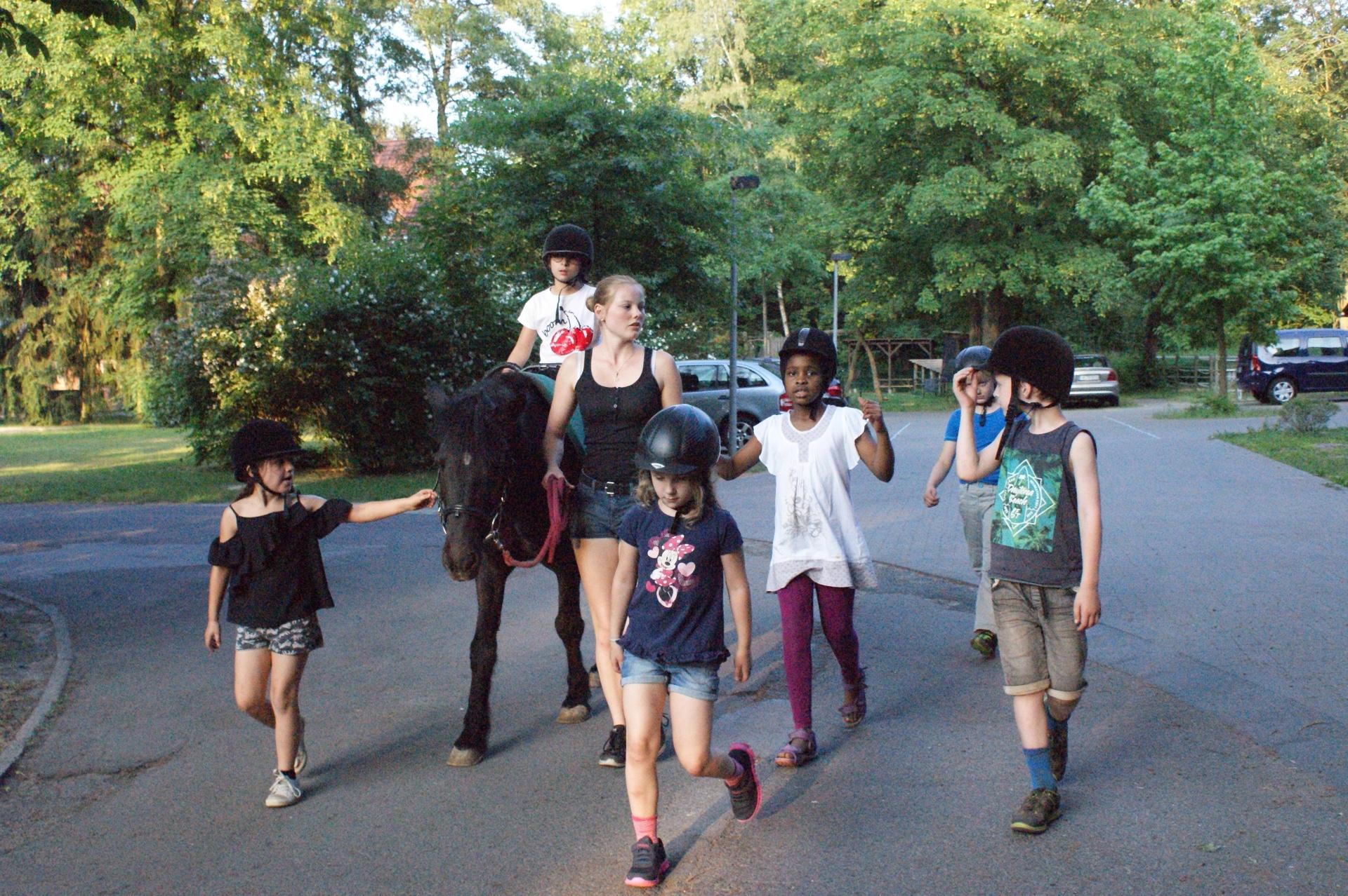 Heilpädagogischer Wanderritt